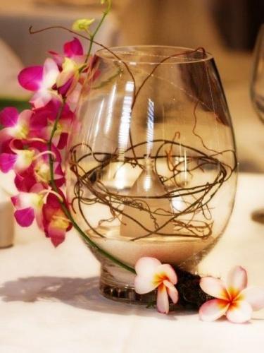 Lotus Singapore orchid + Dodo vine
