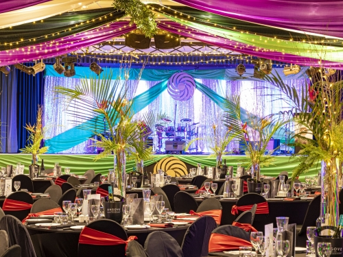 Silver sequin backdrop colourful ceiling canopy, Golden cane table decoration Cex