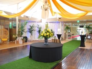 Island pre dinner drinks - Star ceiling canopy yellow & white silks Pacific Bay Resort