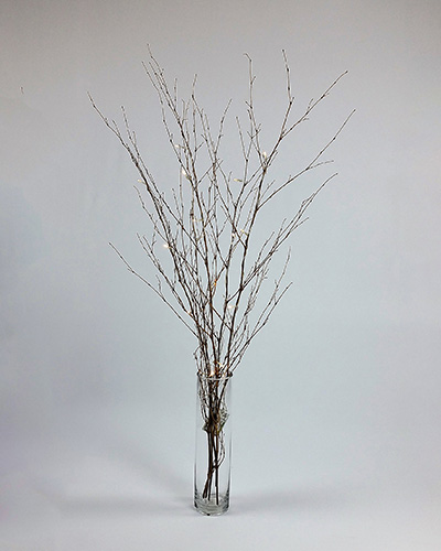 Glass Cylinder 40cm Vase Battery Fairy Light Branches Special